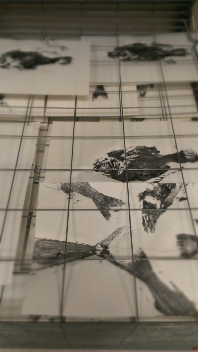 fish.prints.4